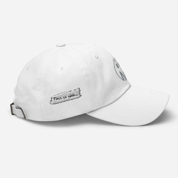 Secret Hat 24